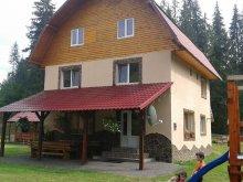 Kulcsosház Gesztrágy (Straja (Căpușu Mare)), Elena Kulcsosház