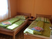 Accommodation Tiszafüred, Sirály Apartment