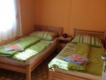 Accommodation Tiszakeszi, Sirály Apartment