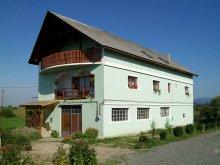 Accommodation Bârsău Mare, Abigél Guesthouse