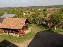 Pensiune Valea Roșie, AgroPensiunea Plaiul Castanilor