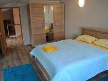 Accommodation Susenii Bârgăului, Beta Apartment