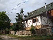 Nyaraló Forgacskut (Ticu), Liniștită Ház