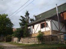 Nyaraló Kékesújfalu (Corvinești), Liniștită Ház
