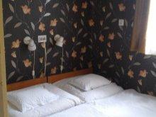 Apartment Poroszló, Csillag Guesthouse 3.
