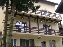 Villa Székelytamásfalva (Tamașfalău), Katalina Villa 2