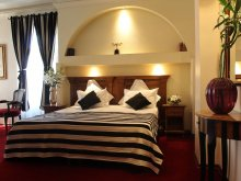 Hotel Broșteni (Vișina), Domenii Plaza Hotel