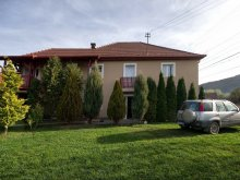 Accommodation Saschiz, Bagyi Guesthouse