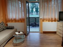 Accommodation Békés county, Nárcisz Apartment