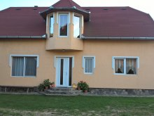 Accommodation Capalnita (Căpâlnița), Sándor Guesthouse