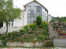 Accommodation Ceahlău, Aquatur Guesthouse