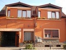 Accommodation Archiud, Monica Vila