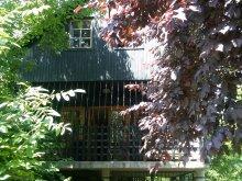 Accommodation Nyírbátor, Levi House