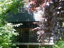 Guesthouse Szabolcs-Szatmár-Bereg county, Levi House
