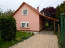 Accommodation Füzesgyarmat, Kamilla Vacation House