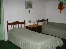 Accommodation Zăpodia (Traian), Colț de Rai Vila