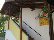 Bed & breakfast Cotmeana (Stolnici), Ana Guesthouse