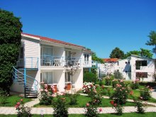 Vilă Satu Nou (Oltina), Vila Alfa