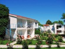 Vilă Satu Nou, Vila Alfa