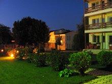 Villa General Scărișoreanu, Beta Vila
