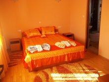Accommodation Spermezeu, Georgiana Guesthouse