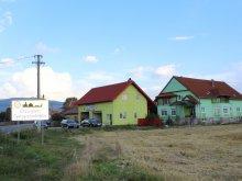 Accommodation Suseni, Szász&Szász Guesthouse