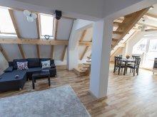 Apartament Pleșești (Berca), Duplex Apartment Transylvania Boutique
