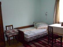 Accommodation Pârvulești, Vidéki Chalet
