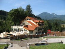 Bed & breakfast Poienile, Topaz Guesthouse