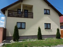 Accommodation Borzont, Tofi Guesthouse