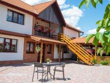 Accommodation Țigăneștii de Criș, Casa Paveios Guesthouse