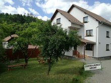 Guesthouse Budacu de Sus, Boncz Guesthouse