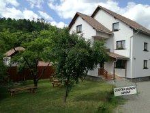 Vendégház Apanagyfalu (Nușeni), Boncz Udvar
