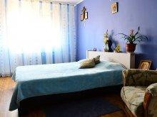 Accommodation Cuza Vodă, NYX Guesthouse
