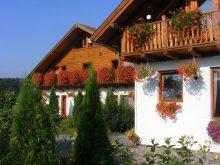 Bed & breakfast Gurghiu, Casa Romantic Guesthouse