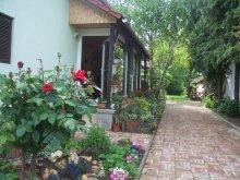 Casă de oaspeți Abádszalók, Casa de Oaspeți Barátka