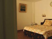 Accommodation Techirghiol, Vila Patricia