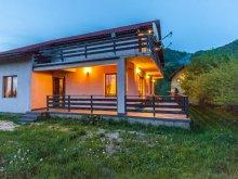 Accommodation Tohanu Nou, Două Râuri Guesthouse