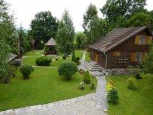 Accommodation Dănești, Nagy Lak I. Guesthouse