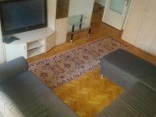 Cazare Sâniob, Apartament Rogerius