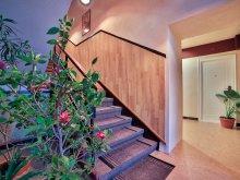 Accommodation Capu Dealului, Hostel Odorhei