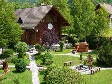 Accommodation Sândominic, Nagy Lak II. Guesthouse