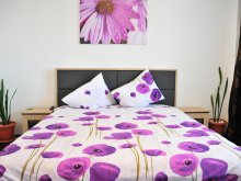 Accommodation Mărgineni, La Sonia Apartment