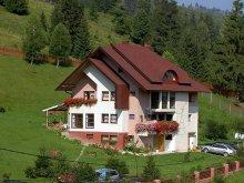 Accommodation Sucevița, Casa Lucreția Guesthouse