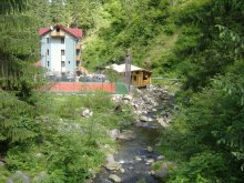 Panzió Mușca, Valea Paradisului Panzió