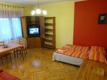 Apartment Nagybörzsöny, Danube-Panorama Apartment