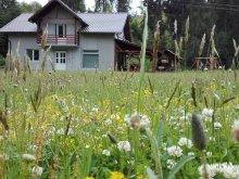 Accommodation Săliște de Vașcău, Georgiana Chalet