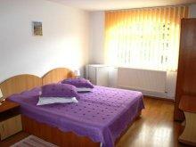 Bed & breakfast Movila (Niculești), Gura de Rai Guesthouse