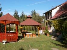 Accommodation Mikófalva, Ferencz Guesthouse
