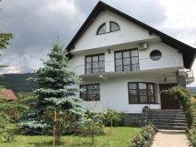 Casă de vacanță Mijlocenii Bârgăului, Casa Ana Sofia